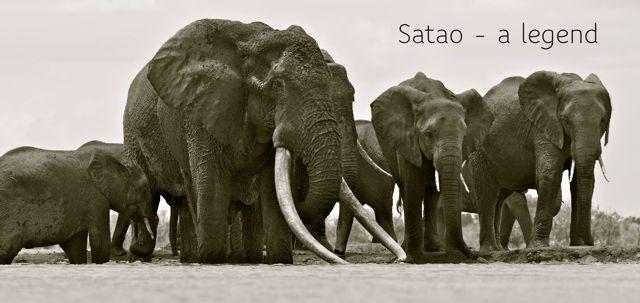 Satao - legend just title