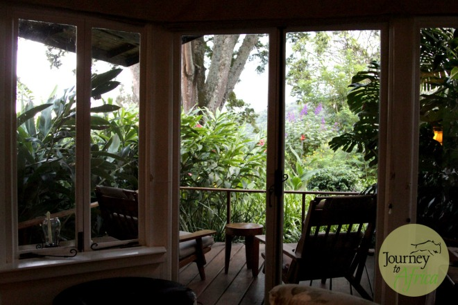 The lush view from the room. Enjoy your morning coffee from here.