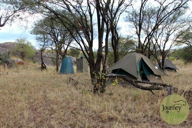 wilderness_tent
