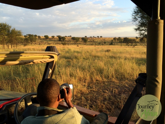 guides_on_safari